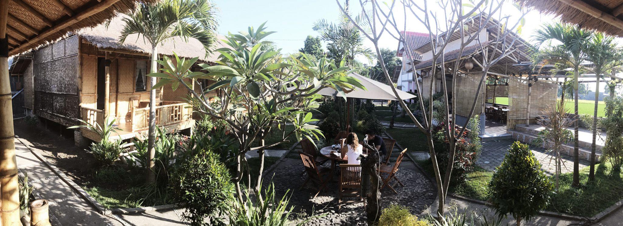 16 JAWA - Jawa: wulkan Ijen, Bromo, Yogyakarta i świątynie