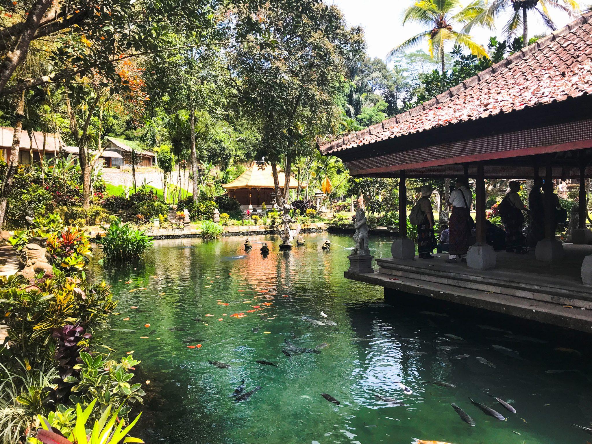 2F785E42 8114 42C6 90EE B573CE1D7CD1 - Bali i Nusa Lembongan