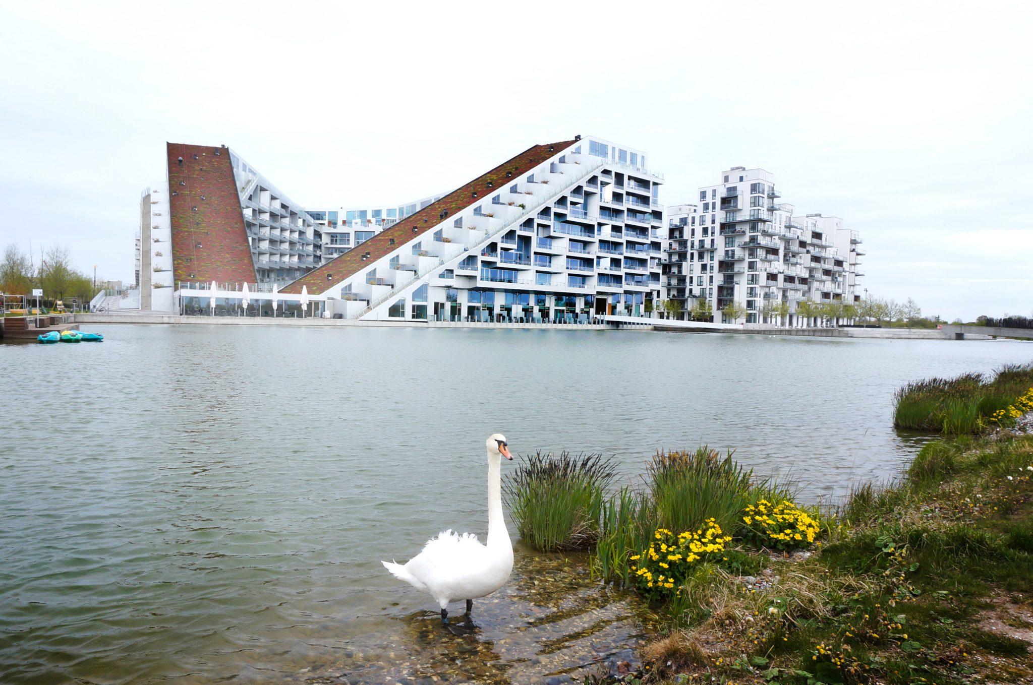 DSC04065 - Kopenhaga - Architour