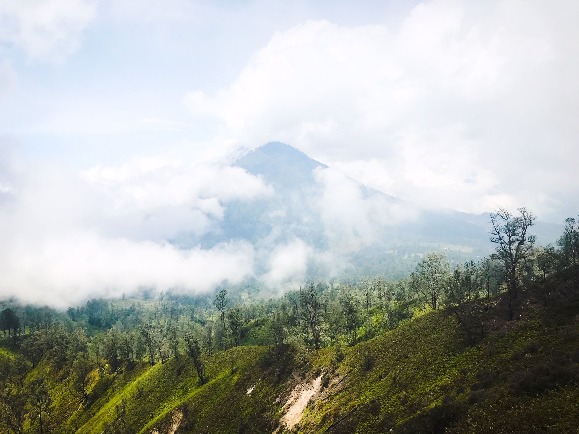 IMG 1192 - Jawa: wulkan Ijen, Bromo, Yogyakarta i świątynie