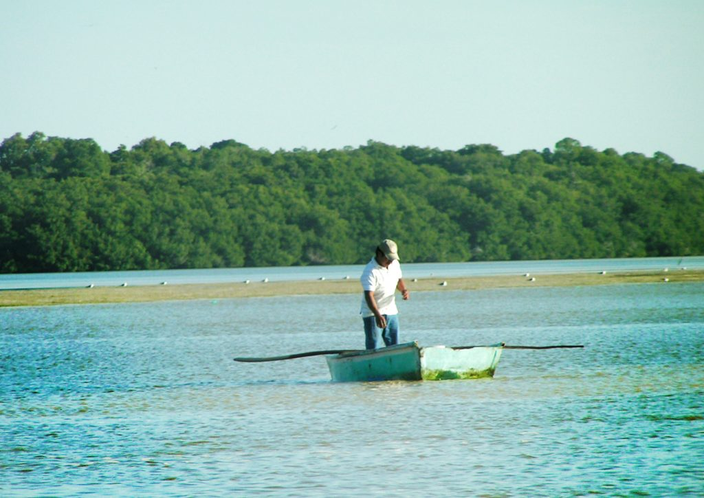 Celestun4 1024x724 - Meksyk - Jukatan - plaże i cenoty