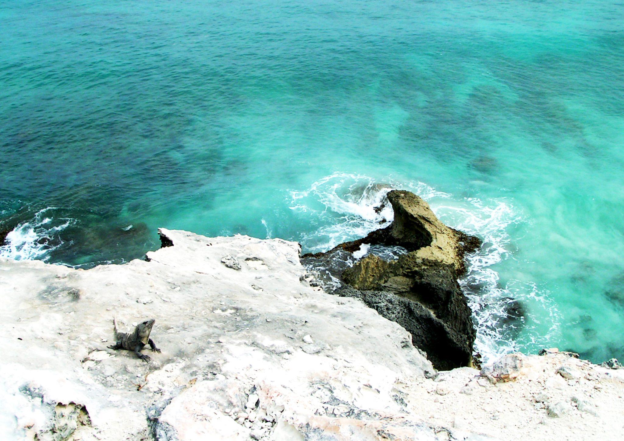 IslaMujeres14 - Meksyk - Jukatan - plaże i cenoty