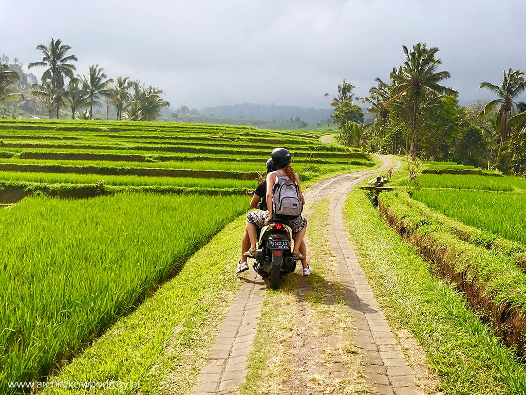 09 indonezja - Indonezja- informacje ogólne