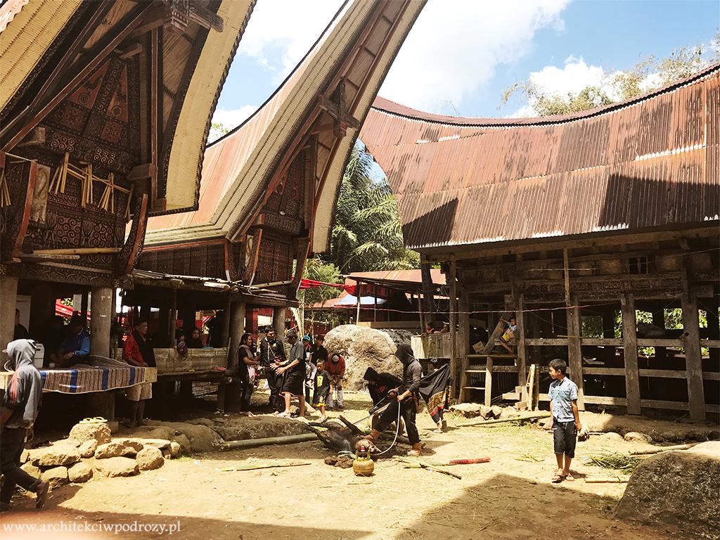 19 - Sulawesi ( Celebes)
