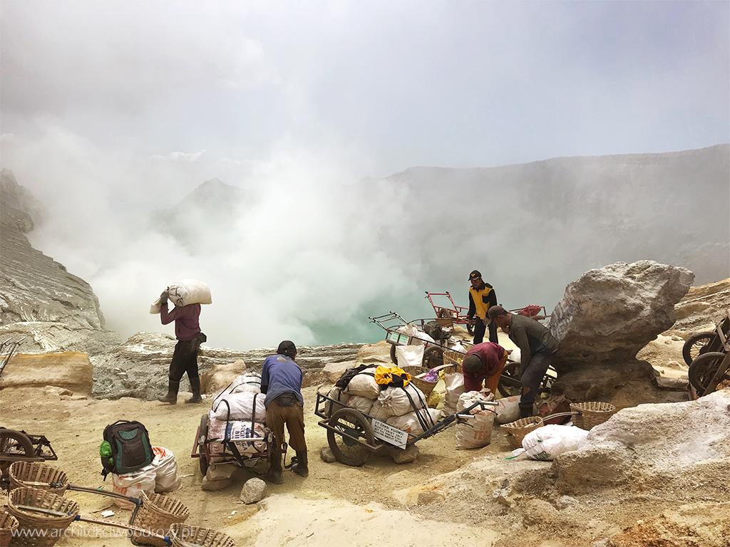 jak pakuja - Jawa: wulkan Ijen, Bromo, Yogyakarta i świątynie