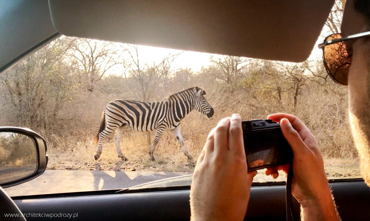 006 rpa safari - RPA- informacje ogólne